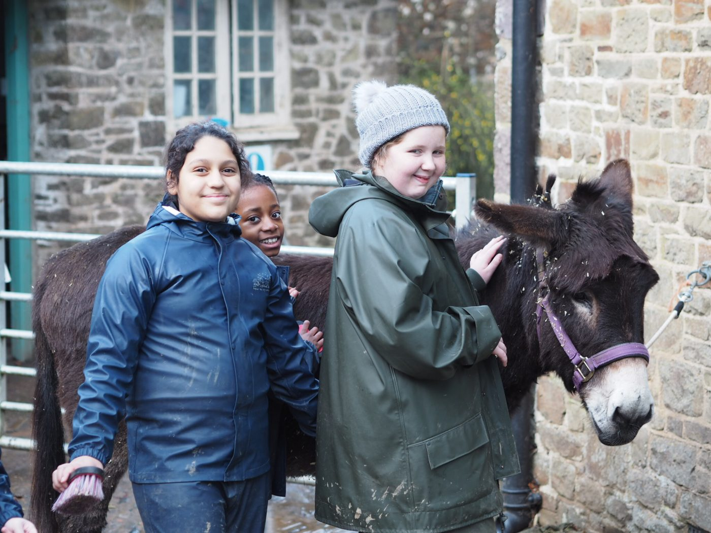 Two girls grooming a donkey, outdoor education